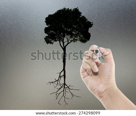 Success and Failure Conceptual with Trees - stock photo