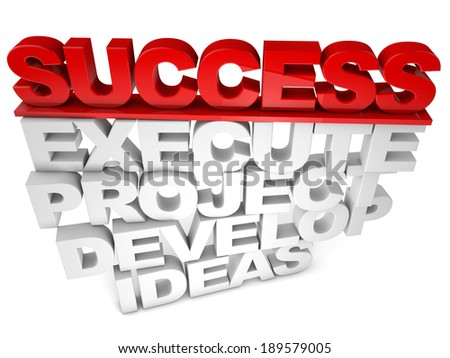 Success execute project develop ideas over white background - stock photo