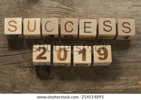 success 2019 on a wooden background - stock photo