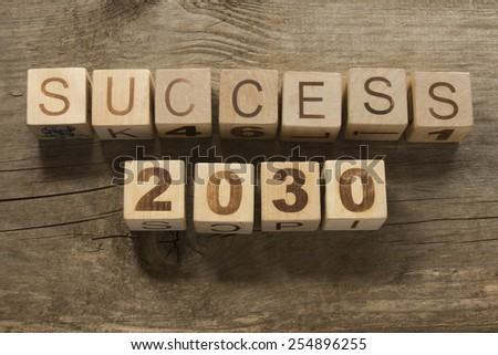 success 2030 on a wooden background - stock photo