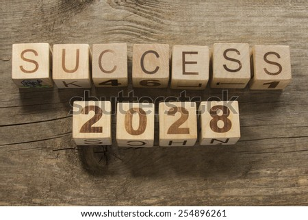 success 2028 on a wooden background - stock photo