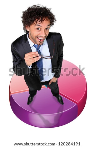 successful businessman posing on a circle diagram - stock photo