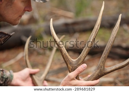 successful deer hunter holding antlers close up - stock photo