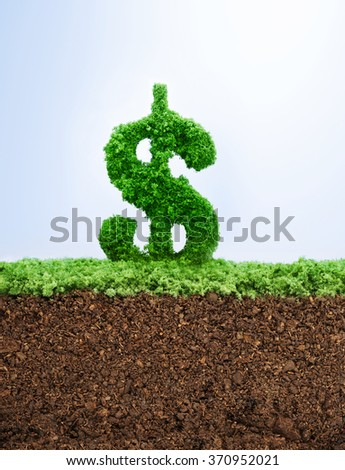 Successful investment concept with grass US Dollar symbol shape