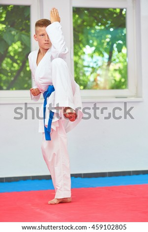 successful kid in karate