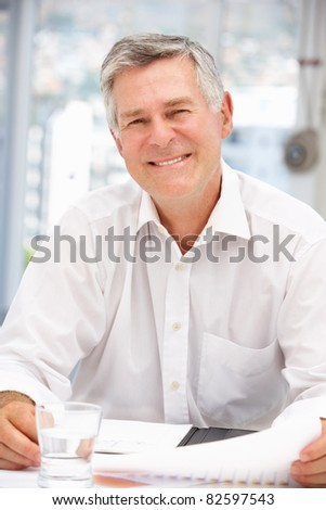 Successful senior businessman - stock photo
