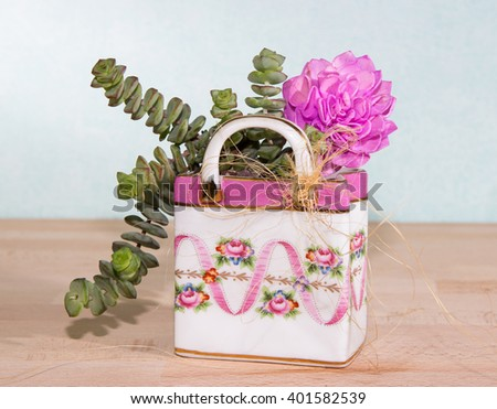 Succulents planted in a colorful ceramic bag, a creative way to give a small, induvidually present. - stock photo