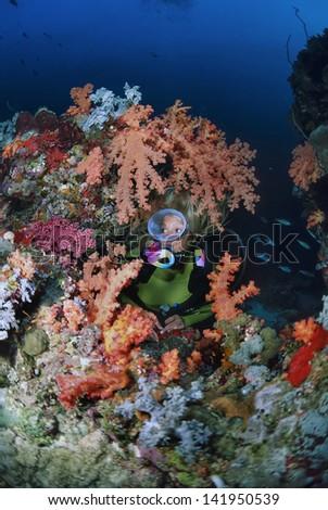 SUDAN, Red Sea, Sanghaneb Reef, scuba diver and soft corals - FILM SCAN - stock photo
