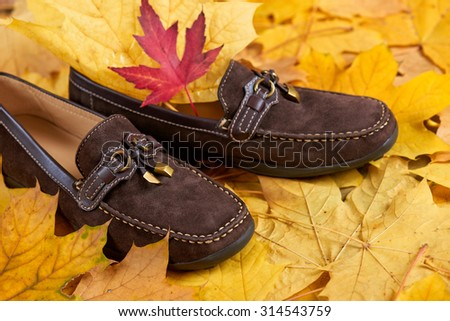 suede shoes on yellow autumn leaves background - stock photo
