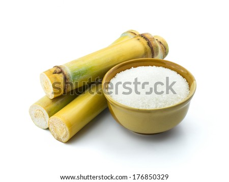 Sugar cane isolated on white background - stock photo
