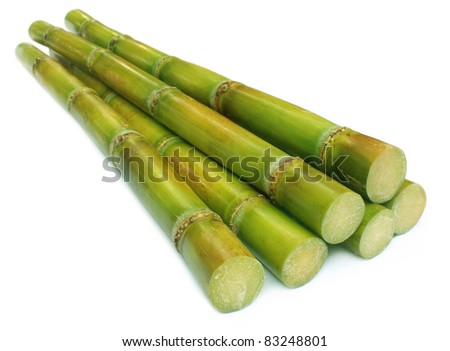 Sugar cane over white background - stock photo