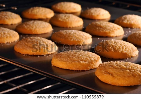 Sugar cookies baking in oven.  Closeup with shallow dof. - stock photo