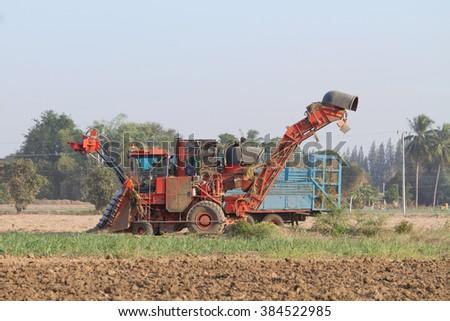 sugarcane harvester and ten-wheel tractor  - stock photo