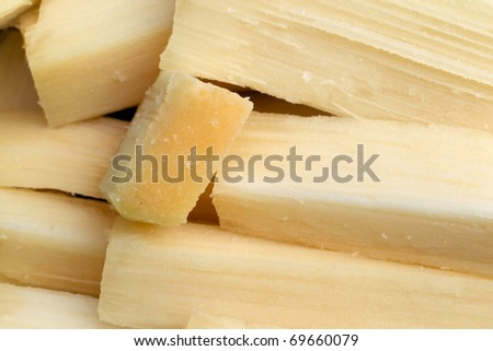 SUGARCANE PIECES READY TO BE CHEWED  - stock photo