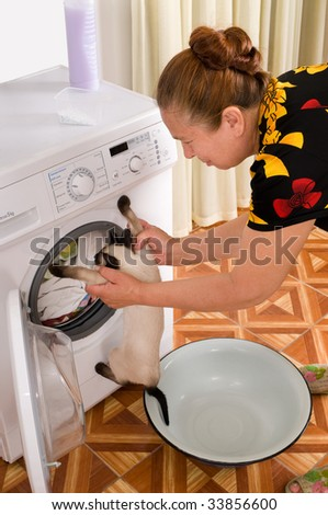 Suggests a curious cat to bathe. A joke. - stock photo