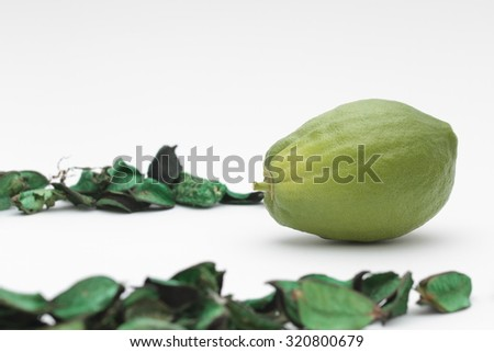 Sukkot etrog isolated on white background with copy space. Bright yellow citrus fruit with green stem at bottom and round pitom on top. Used as one of the four species for the Jewish holiday.