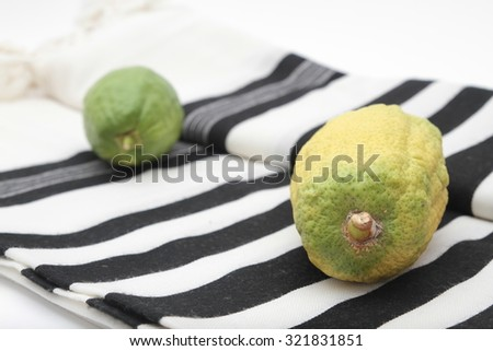 Sukkot Holiday ,  etrog and Tallit ,  Bright yellow citrus fruit with green stem at bottom and round pitom on top. Used as one of the four species for the Jewish holiday.