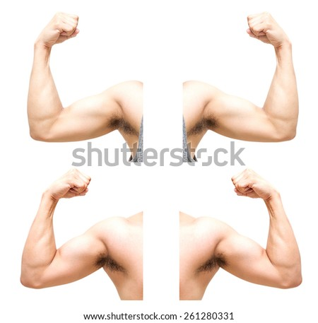 sum 4 pic of biceps on white background - stock photo