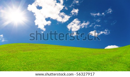 Sumer landscape - stock photo