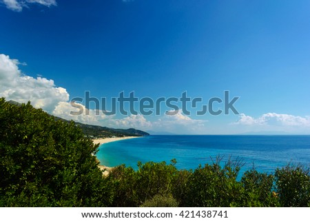 Summer Adriatic Sea coastline view with tree, thistle plant and stone in front. wild beach in albania