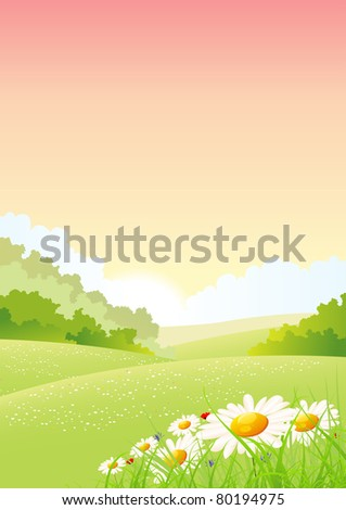 Summer And Spring Flowers Landscape Poster/ Illustration of a spring or summer seasons holidays background poster, with flower, grass and meadows, cornflowers, daisy, poppies