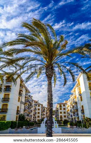 Summer apartments condominium on the Mediterranean seaside with a palm tree in front - stock photo