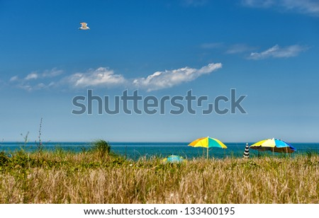 Summer at Martha 's Vineyard - Seagull soaring over a beach at Martha's Vineyard on a sunny day - stock photo