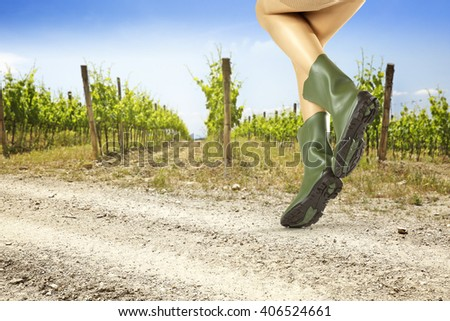 summer background of vineyard and green shoes  - stock photo