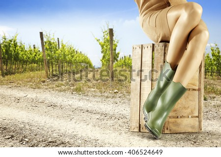 summer background of vineyard and wooden box and woman legs and green shoes and road  - stock photo