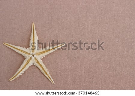 Summer background: starfish on the biege background - stock photo