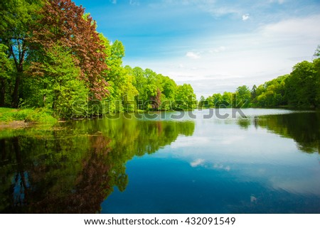 Summer background. Summer landscape with lake, flowers, trees, and sky. Holiday in park.