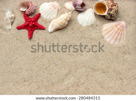Summer background with sand and shells - stock photo