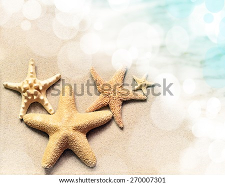 Summer beach. Family of starfish on the sand. - stock photo