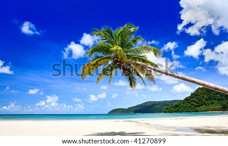 Summer beach - palm tree, mountain on remote island, white sand,  sea water, tropical nature in family hotel - stock photo