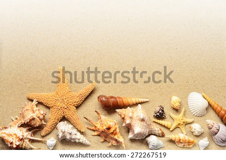 Summer beach. Starfish and seashell on the sand. - stock photo