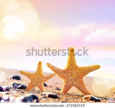 Summer beach. Two starfish. - stock photo