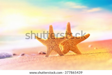 Summer beach with a starfish on a background of the tropical ocean and the sunset sky - stock photo