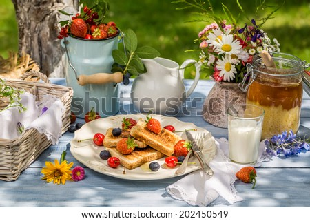 Summer breakfast in the garden - stock photo