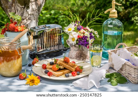 Summer breakfast in the garden with fruit toast with honey