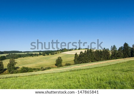 Summer countryside - stock photo
