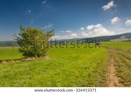 Summer countryside with road through green pasture and blue sky - Czech Republic, Europe - stock photo