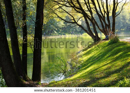 Summer day in city park. Trees on the shore of the pond. Moscow