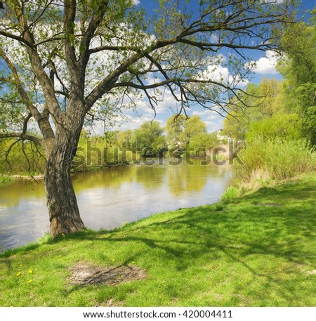 Summer day on the shore of riwer - stock photo