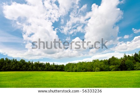 Summer day with blue sky,trees and grass - stock photo