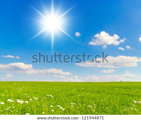 Summer Days Sunshine Scene