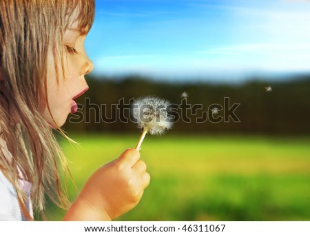 Summer delight - stock photo