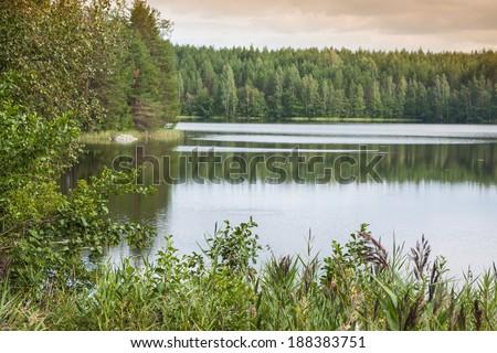 summer evening scene at Ruunaa hiking area, Finland - stock photo