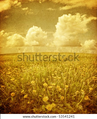 Summer field under sky in grunge and retro style - stock photo