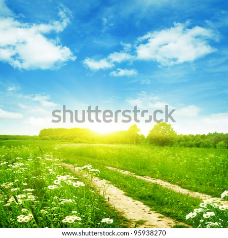 Summer field with road and sun in blue sky. - stock photo