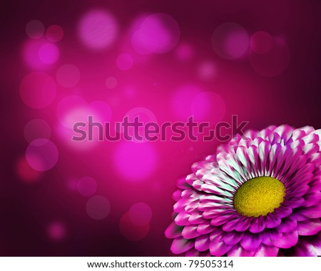 Summer flower design. With copy-space - stock photo